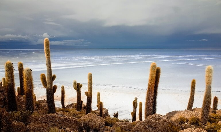 best things to do in bolivia