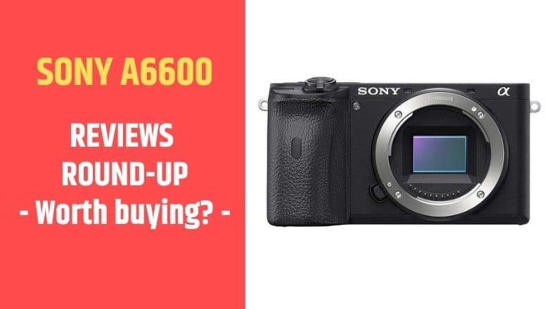 review sony a6600