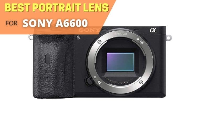 Best portrait lens for sony a6600